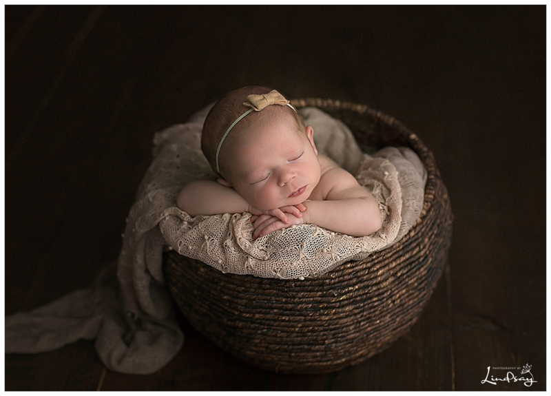 Newborn girl asleep in brown basket at martinsburg west virginia photography studio