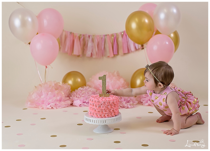 First Birthday Cake Smash Session Photography By Lindsay Martinsburg Wv Portrait Photographer
