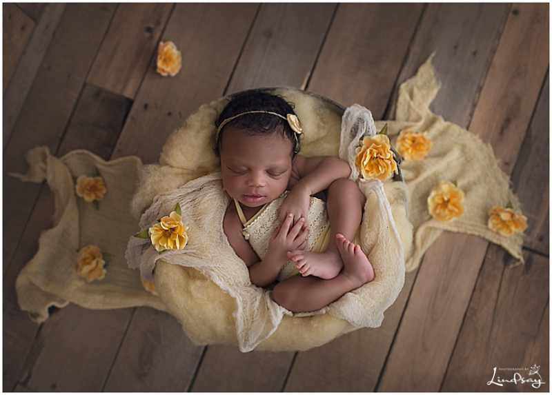 Newborn girl asleep in bucket with yellow fluff and yellow flowers at Photography by Lindsay studio.