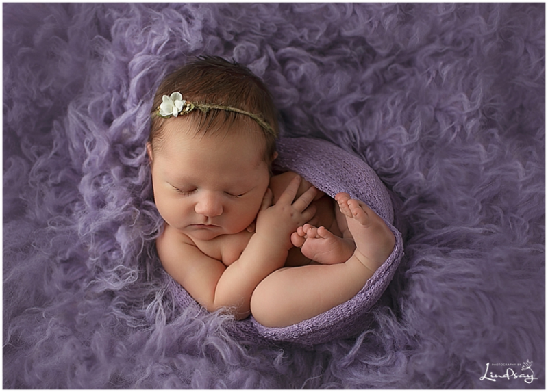 Newborn girl swaddled in purple wrap and sleeping on purple fur rug while at Photography by Lindsay studio.