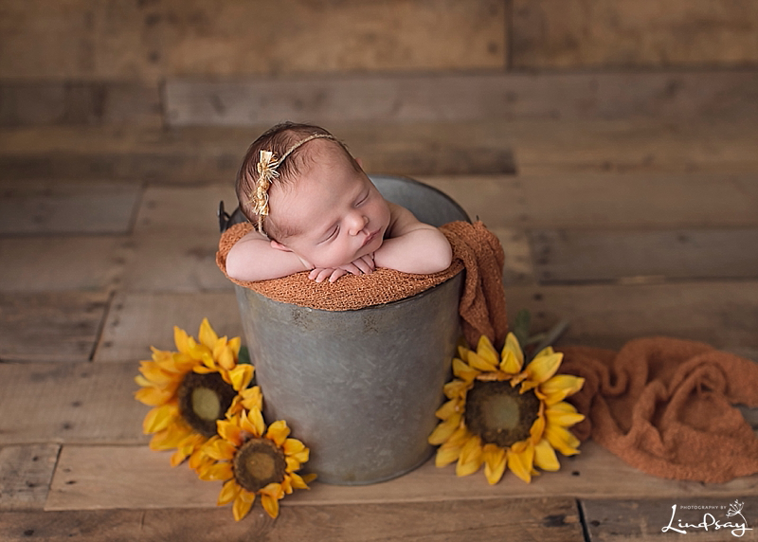 Newborn girl asleep in tin bucket with sunflowers next to her while at Photography by Lindsay Martinsburg WV studio.
